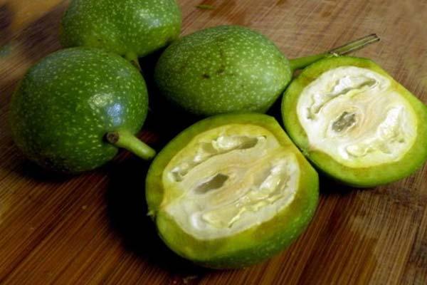 зеленые грецкие орехи фото