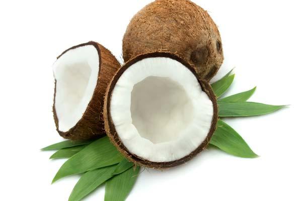 Плоды кокоса на листьях