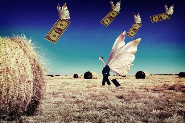 Бабочки и деньги на поле