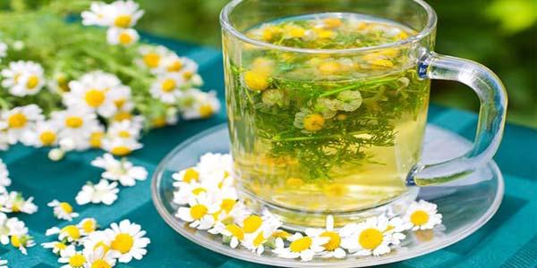 Чай с ромашкой в стеклянной чашке с блюдцем