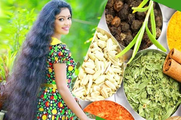 Индианка с длинными волосами, травы и семена в чашках