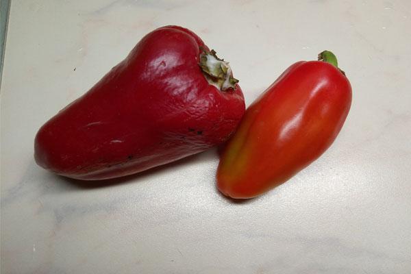 Красный перец болгарский