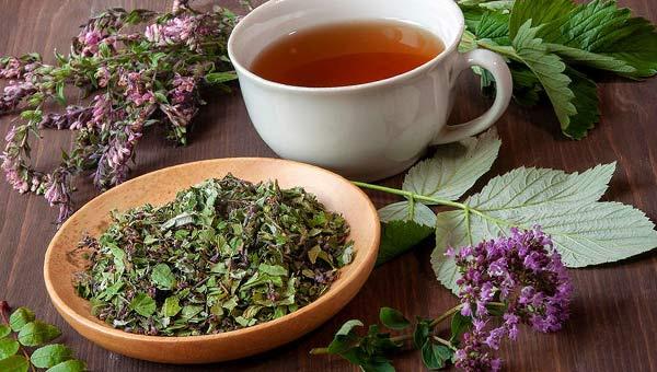 Травяные чаи, кружка с напитком, сухие травы